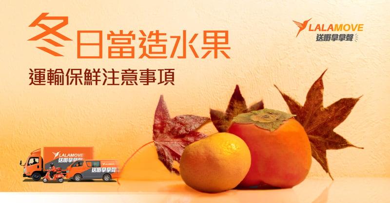 冬日水果blog cover