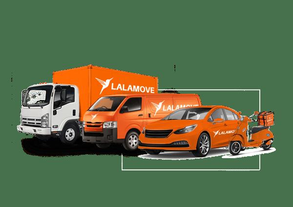 4-Vehicle