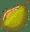 blog_durian-02-03
