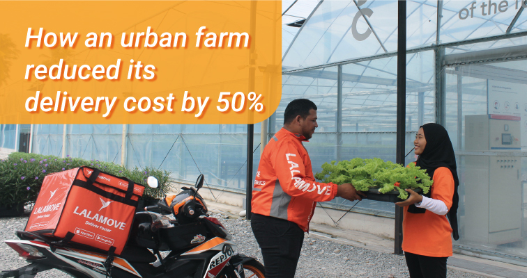 Faster Delivery For Fresher Urban Farming Produce