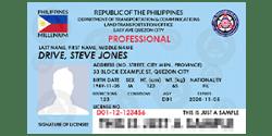 driver_s license