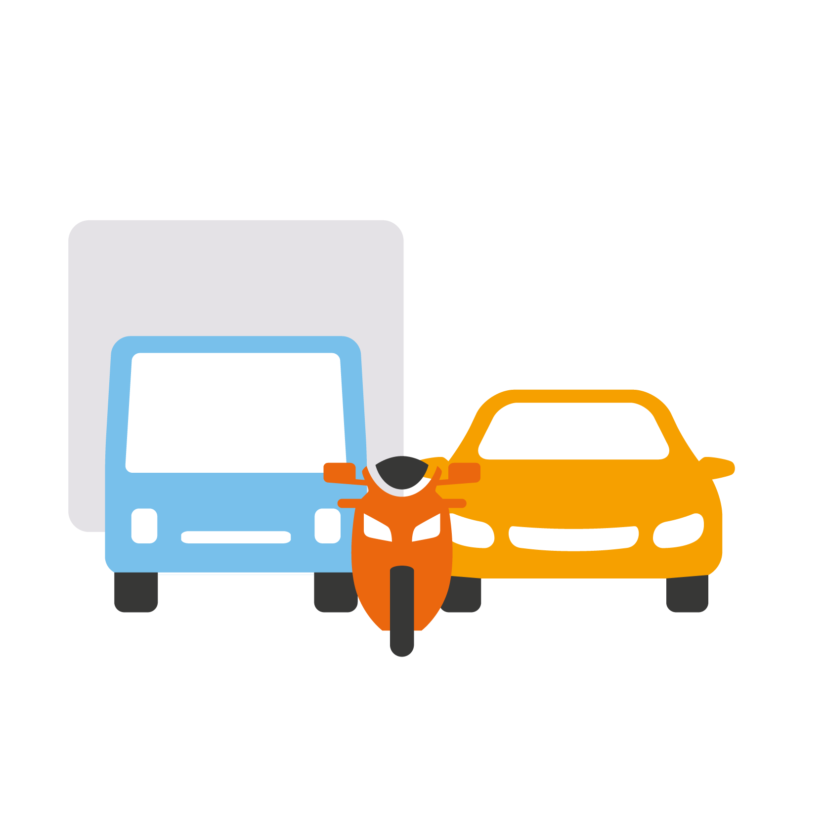 icon-Vehicle option