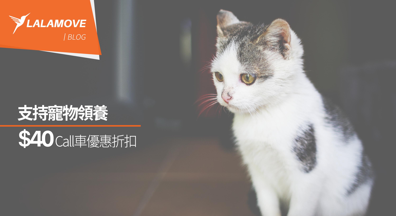 Lalamove 寵物篇 一齊支持寵物領養行動